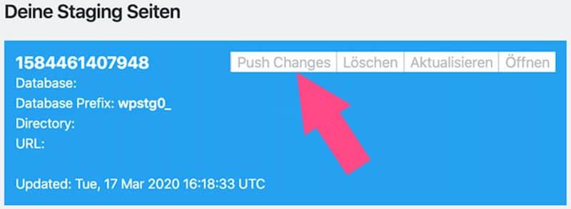 """Mit der Funktion """"Push Changes"""" veröffentlichst du die Staging Version deiner Website"""