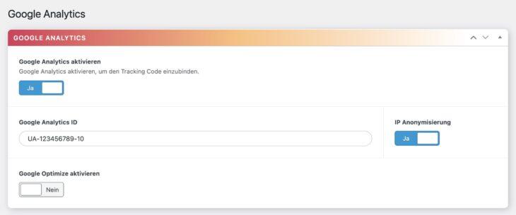 DSGVO Pixelmate Google Analytics Einstellungen