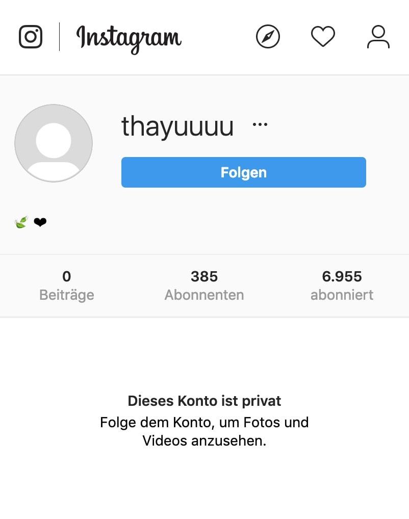 Faux suiveurs sur Instagram (niveau de qualité le plus bas)
