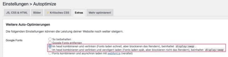 Mit Autoptimize Display swap für Google Fonts einstellen