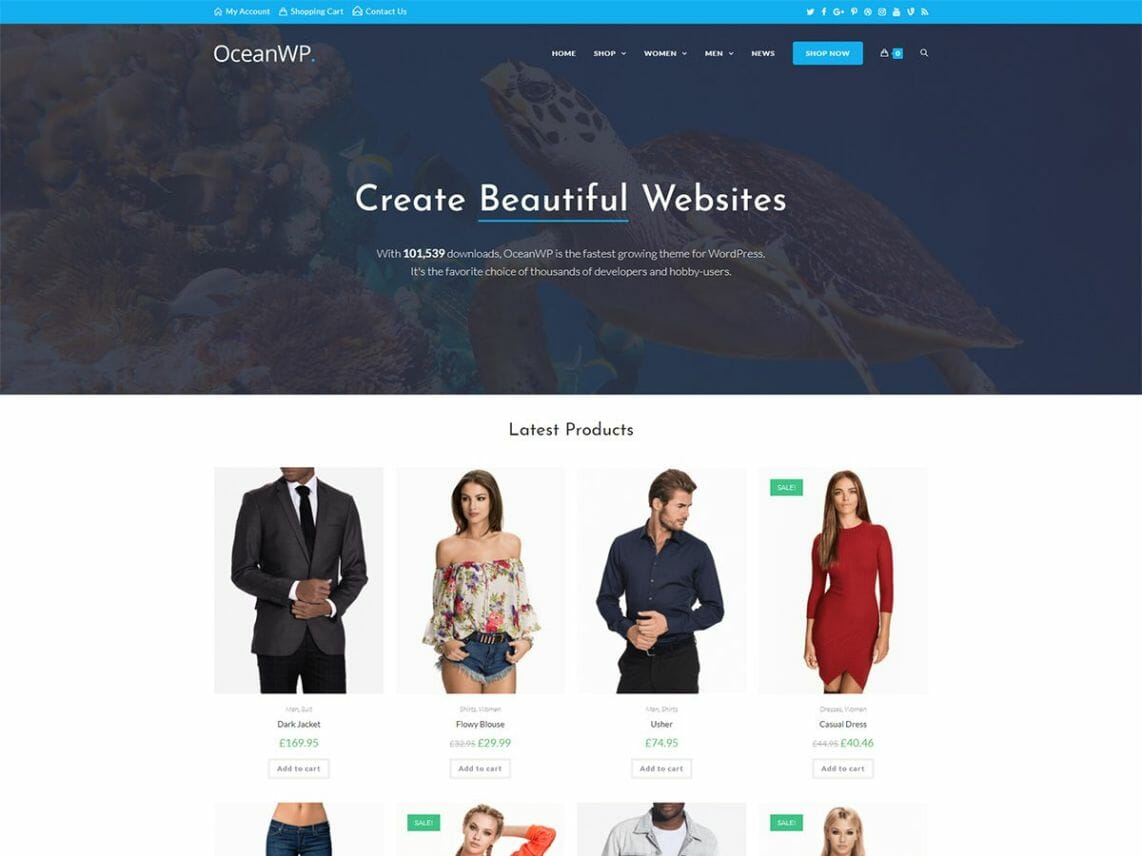 OceanWP WordPress Theme-Framework