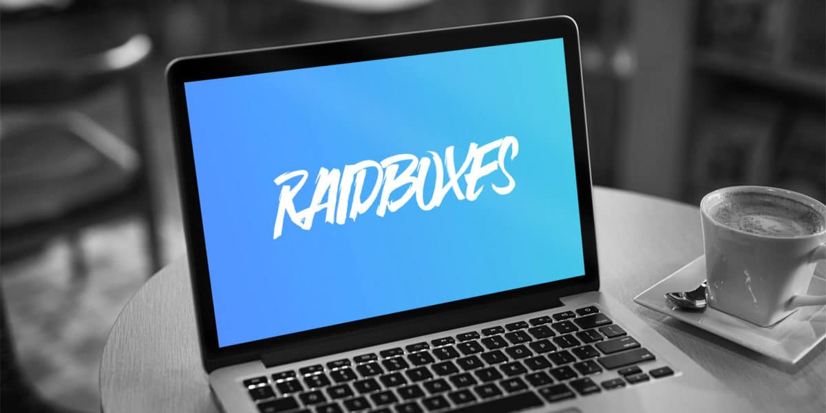 Raidboxes Erfahrungen und Langzeit-Test